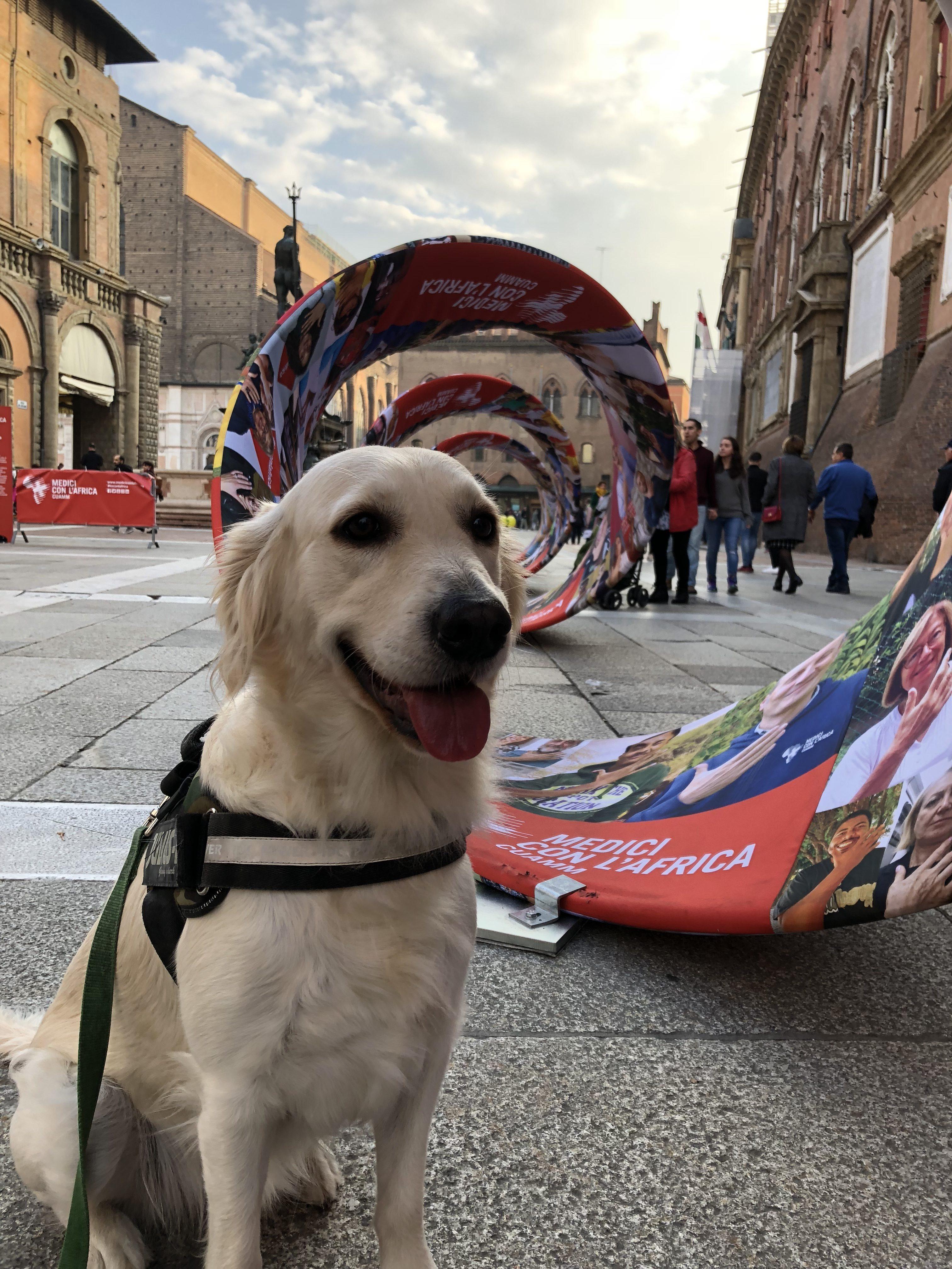 ZampaMente a Bologna 2018-11-12
